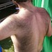 HOT BEAR BARE BACK fun with the Sisters of Perpetual Indulgence (SAFE PHOTO)