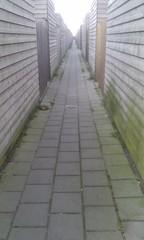 loooong alley