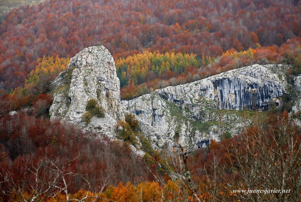 02650-117 Aizkorri. Gazteluaitz emergiendo entre el bosque de hayas de Urkilla en otoño. Imagen tomada desde la cima del Arriona