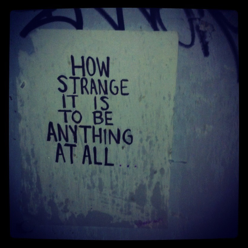 51eadc709 how strange it is to be anything at all | Jen Morrissey | Flickr