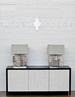 Trousdale Credenza   by urbanwoods123