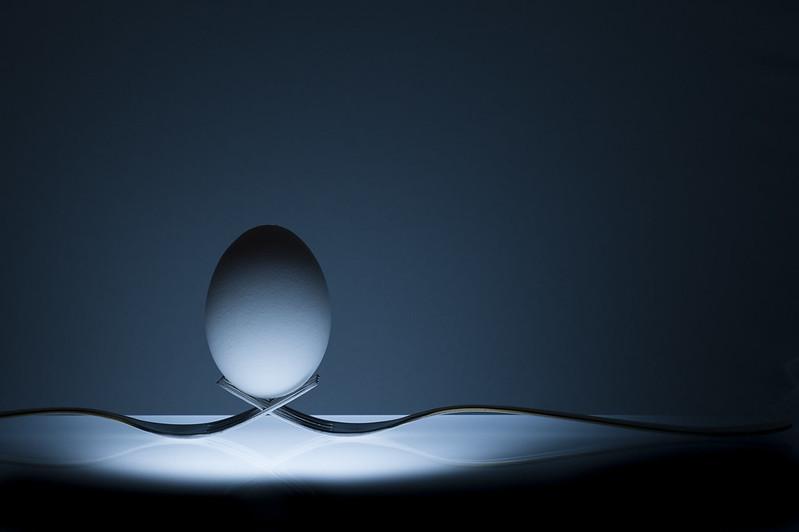 Egg Photography