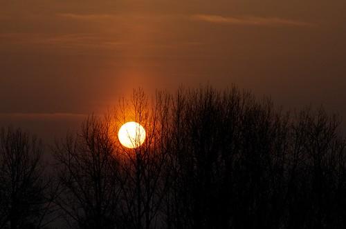 morning sun sunrise nikon sonne sonnenaufgang risingsun morningsun inthemorning d90 yourfav nikond90 afsdxvrzoomnikkor18200mmf3556gifedii 52weeks2012