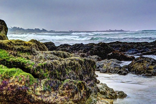 algaecoveredrocks algae rocks moss waves pacificocean asilomarstatebeach pacificgrove montereypeninsula montereybay california water waterpictorial sand beach tidepool joelach