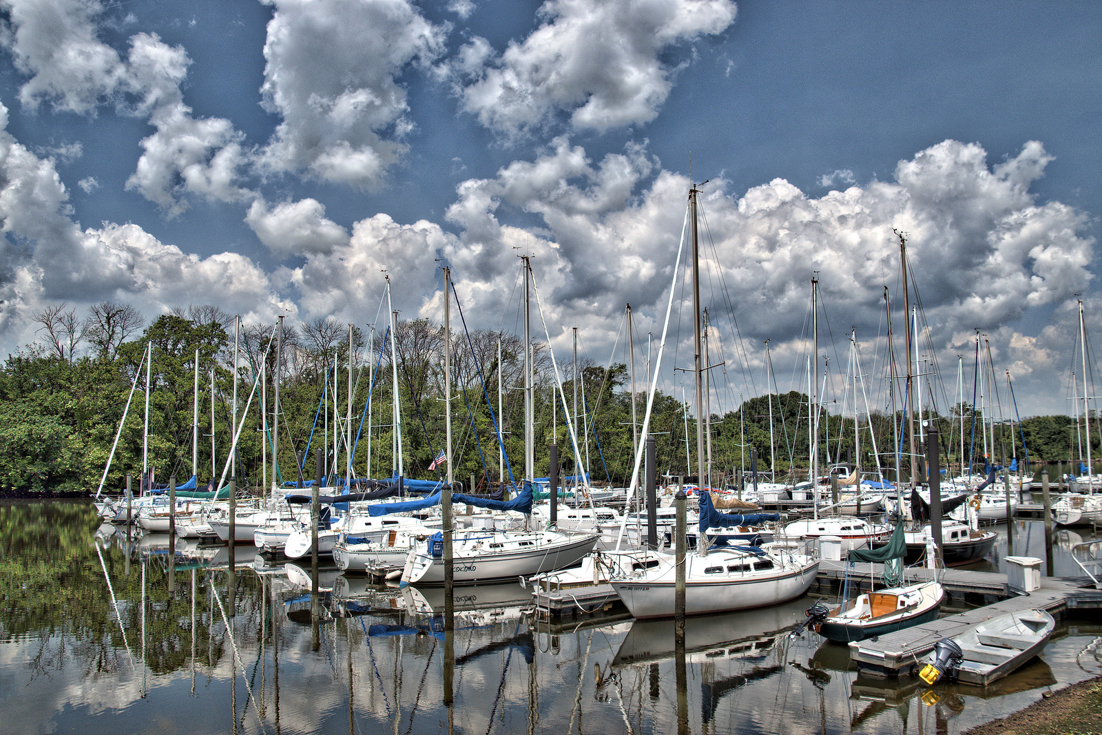 Washington Sailing Marina -- Daingerfield Island Alexandria (VA) June 2016