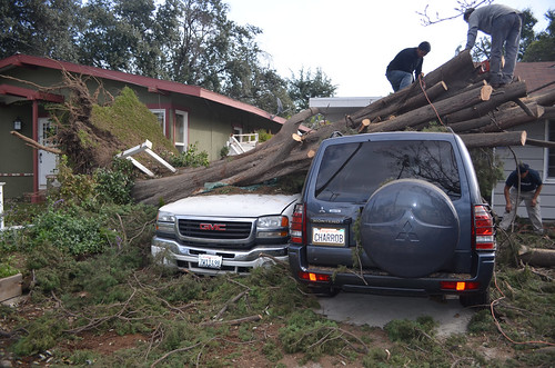 Wind storm in Southern California
