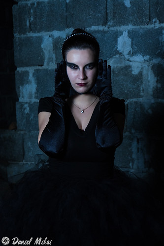 Black Swan   by Daniel Mihai