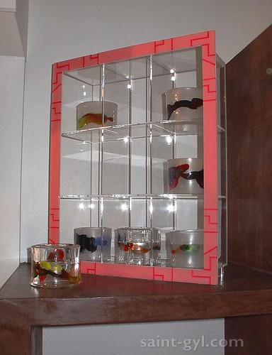 cubes et vitrines 100