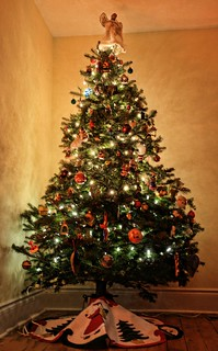 christmas tree | by bambe1964