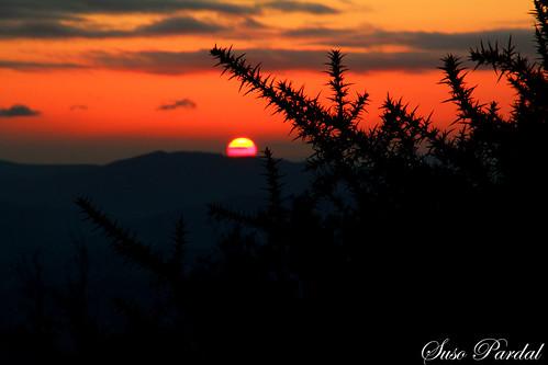 sunset sun nature