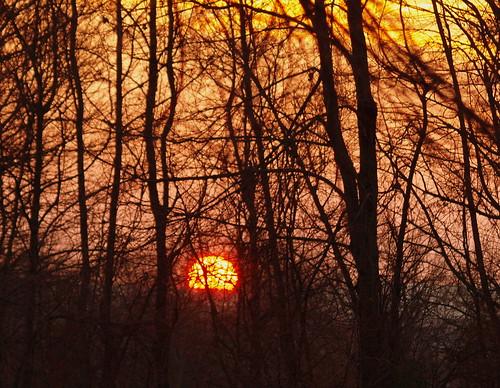 sunset sky golden sundown 2012project366