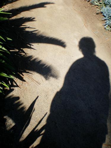 Visiting the botanical garden