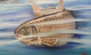 Casting This Is For The Fishermen Lover A Oil Painting 18 Flickr