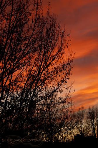 sunset red clouds nc garner