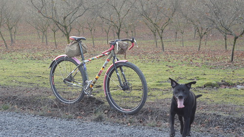 chick and gravel roadster | by BikeTinker