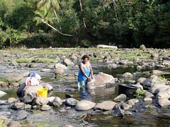 wo, 12/10/2011 - 07:00 - 078. Vrouw doet de was in de rivier