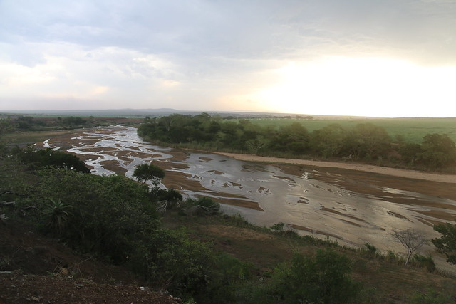 The great Usutu river, that is fed by most of the other rivers in Swaziland, is drying up too and affecting livelihoods of families who depend on its waters for irrigation.