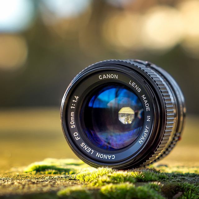 Vintage manual Canon nFD 50mm ƒ/1.4 seen by modern Samyang FE 50mm ƒ/1.4 AS IF UMC AF