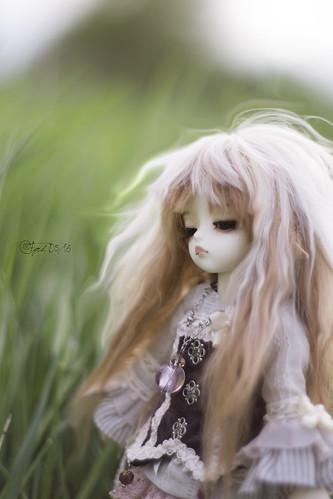 Grassland Fauns 10   by Fyrd8th