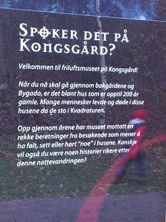 Vest-Agder-museet Kristiansand - spørker det på kongsgård?