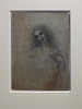 Angelo Incarnato di Leonardo - The Angel in the Flesh by Alberto Cameroni