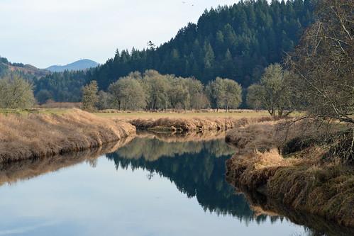 reflection nature river landscape nikon scenery kelso coweeman 55300mm
