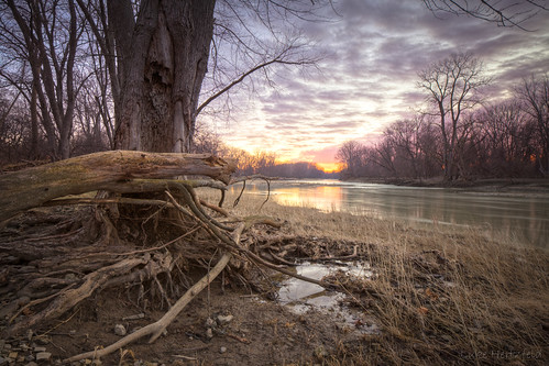 morning trees winter nature grass clouds sunrise river landscape outdoors dawn driftwood deadwood
