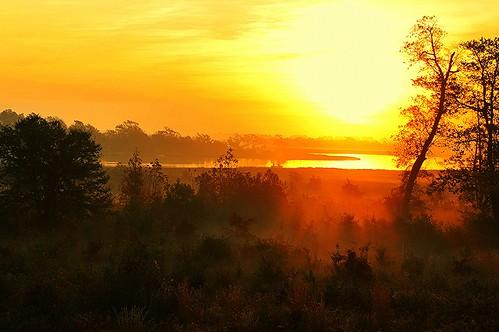 sunrise outdoors nc fishing topsailisland josephforster