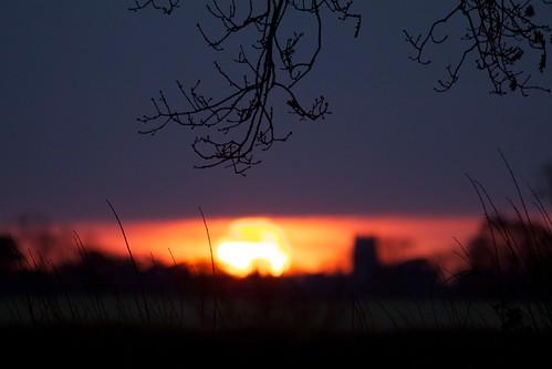 tree silhouette sunrise norfolk canonef70300mmf456isusm