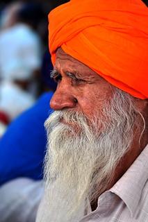 India - Punjab - Amritsar - Golden Temple - Sikh - 251 | Flickr