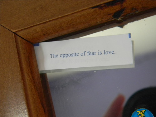 """The Opposite of Fear is Love."" 