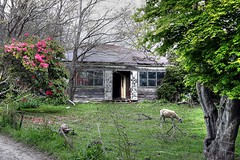 Old house, Lower Styx Road, Parklands, Canterbury, New Zealand