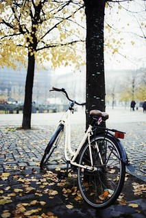 Autumn bicycle in Copenhagen | by The Hamster Factor