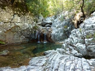 Remontée du Carciara après la cascade de Frassiccia : vasque-cascade