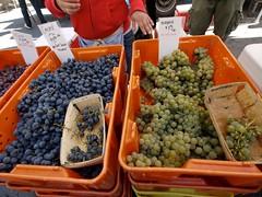 土, 2010-10-02 11:28 - Buzzard Crest Vineyards(土曜日のみUnion Squareに登場)