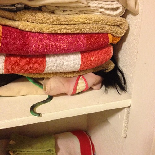 It's normal to have toy snake & Michael Jackson mask with towels in linen closet, right? | by brenbot