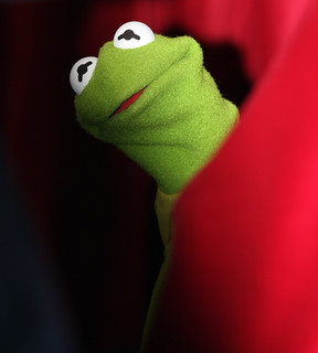 Kermit The Frog | by Eva Rinaldi Celebrity and Live Music Photographer