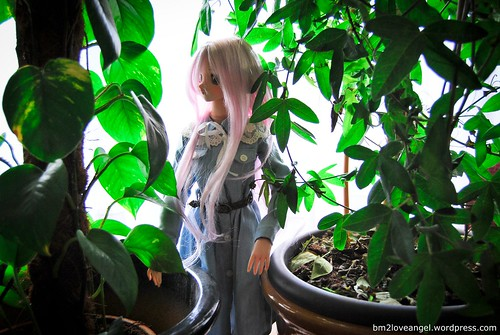 Yukino and the plants | by BM2LoveAngel