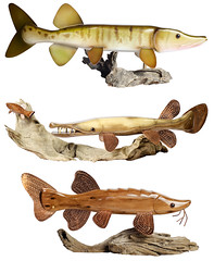 Fish Carvings by Dave Koball