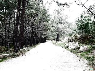 Camino a Faro Subrido nevado | by juantiagues