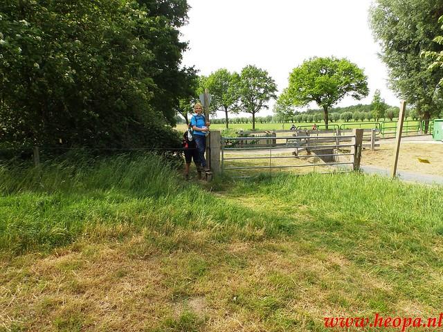 2016-05-21           Scherpenzeel             46 Km  (120)