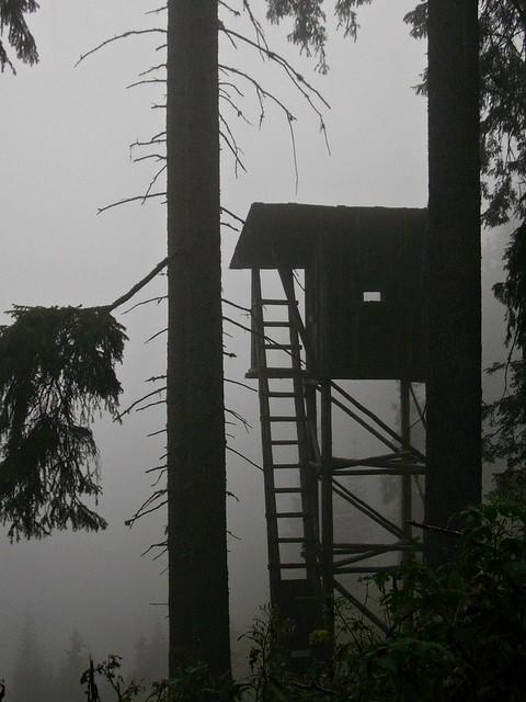 Südtirol - Dolomiten - Hochsitz im Nebel  - 357/841, fog in the forest