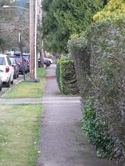 Half a sidewalk
