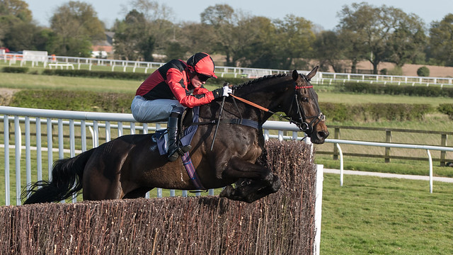 Atlantic Gold at Wetherby