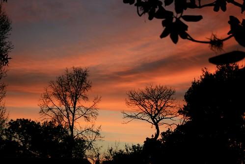 sunset florida beverlyhills citruscounty