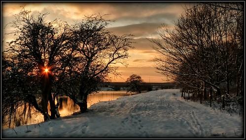 uk trees winter sunset sun sunlight snow reflection water preston winterbeauty