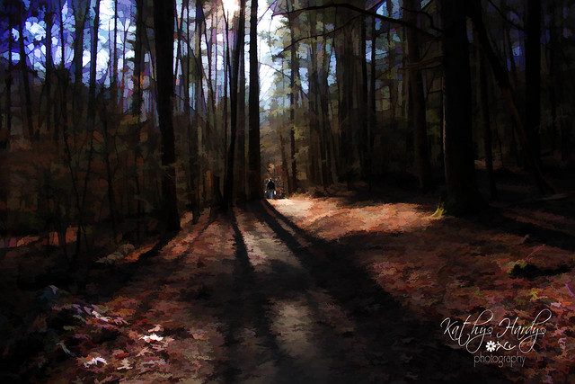 A walk in the woods...