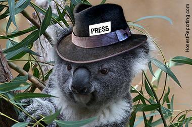 Koala Reporter   by HonestReporting.com