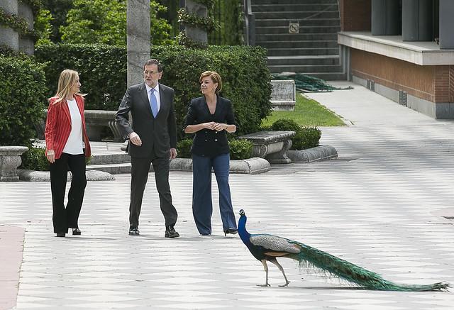 Mariano Rajoy a su llegada al acto