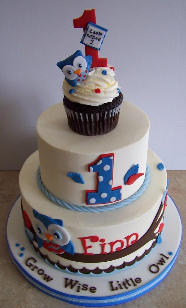 Stupendous 1St Birthday Owl Cake I Fell In Love With Christina Johnso Flickr Personalised Birthday Cards Akebfashionlily Jamesorg